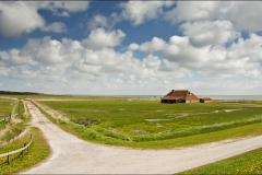 Dwarsdijk-Wierschuur